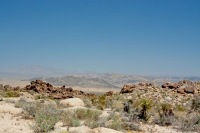 Desert landscape MkUtjI